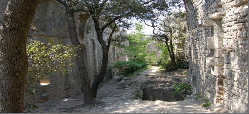 a_l_interieur_des_ruines_du_chateau_large